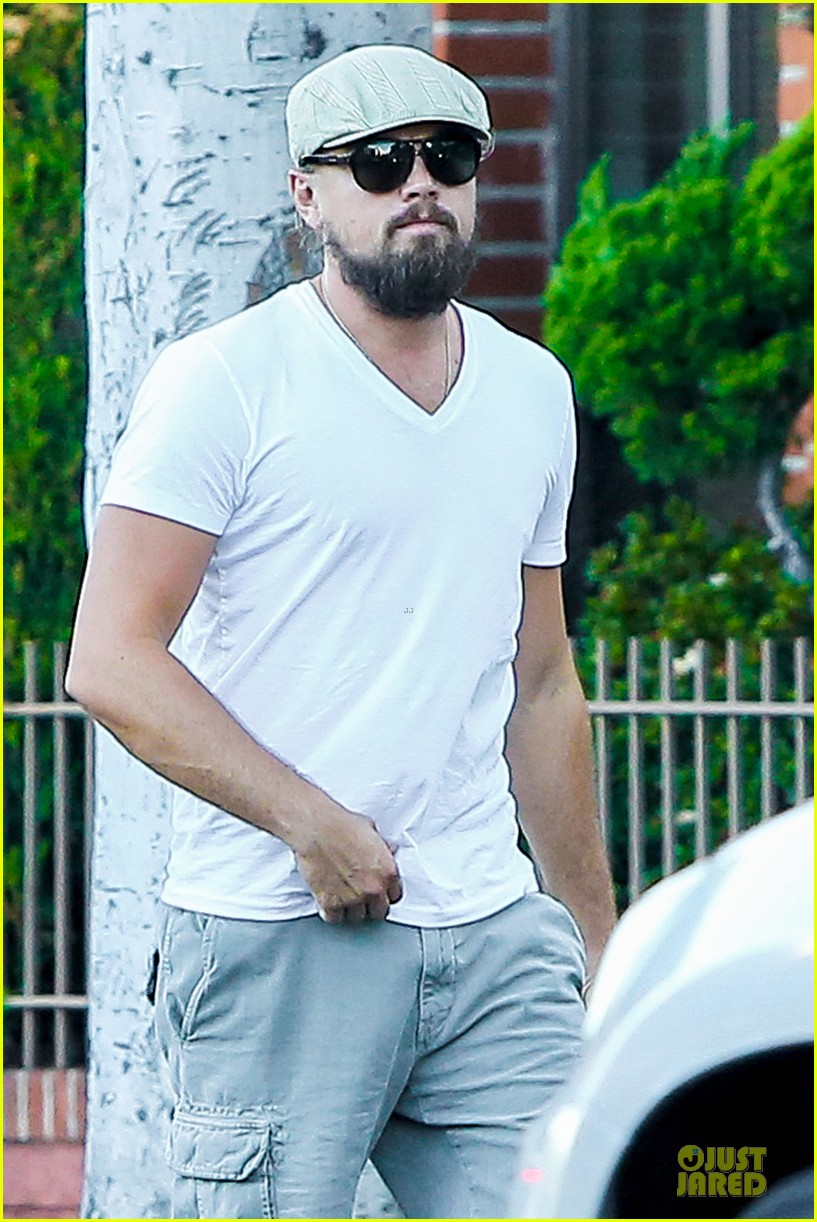 leonardo dicaprio more than a pretty face 043177379