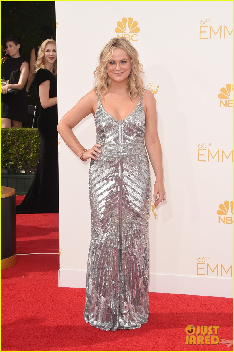 amy poehler emmys 2014 red carpet 02