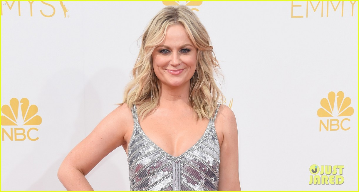 amy poehler emmys 2014 red carpet 05