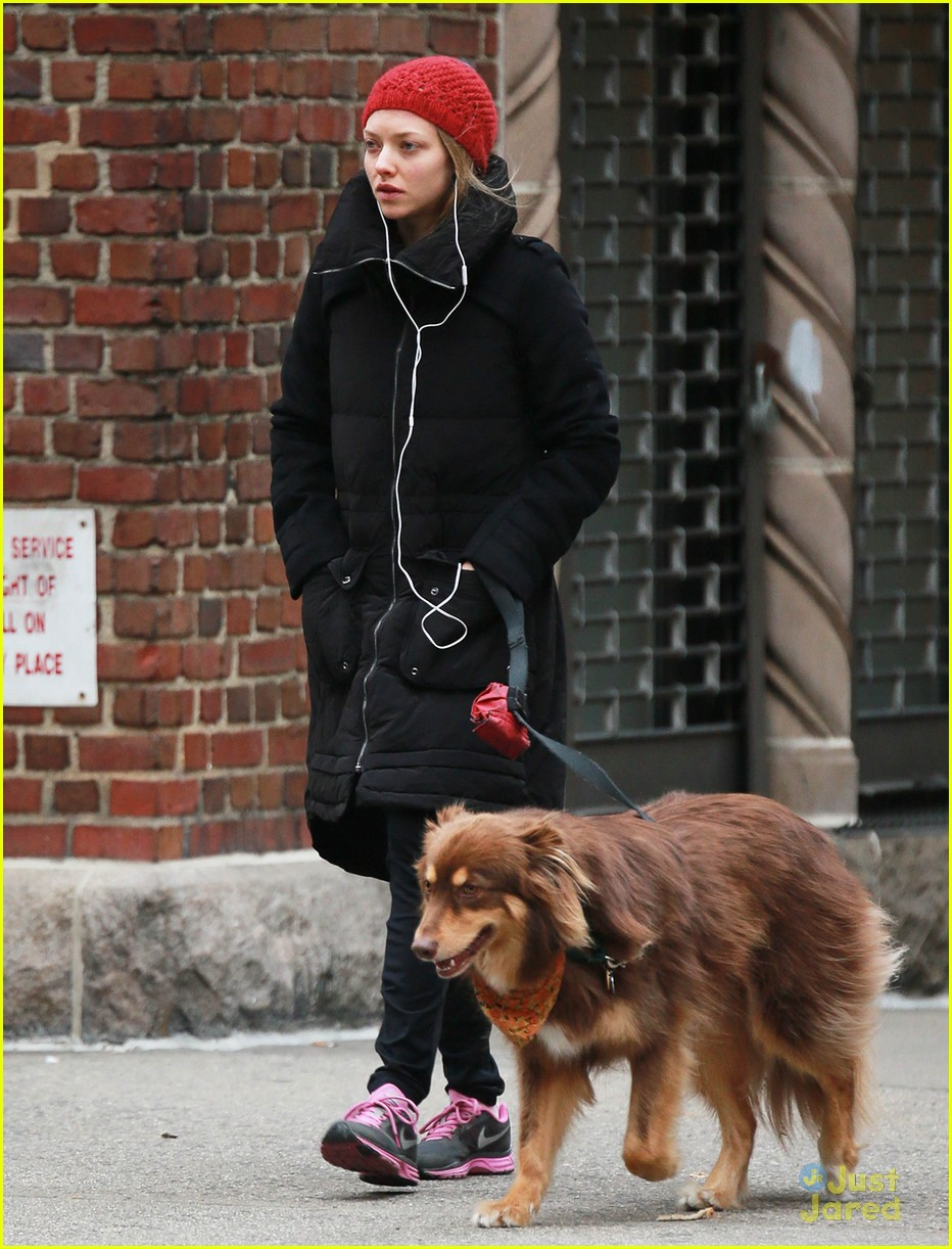 Full Sized Photo Of Amanda Seyfried Dog Walk After Hanging Taylor Swift 02 Photo 3242075 Just Jared