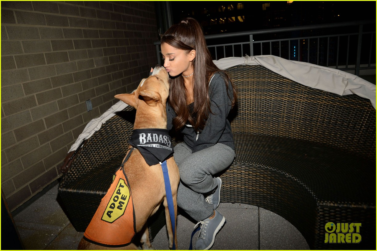 ariana grande is doing amazing things for nyc rescue dogs 15