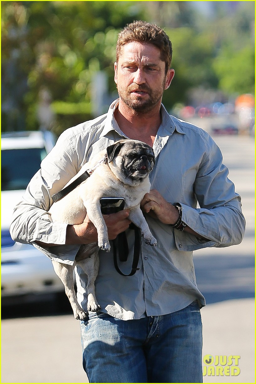 Gerard Butler Takes His Cute Dog Lolita For a Walk: Photo 3423102 ...