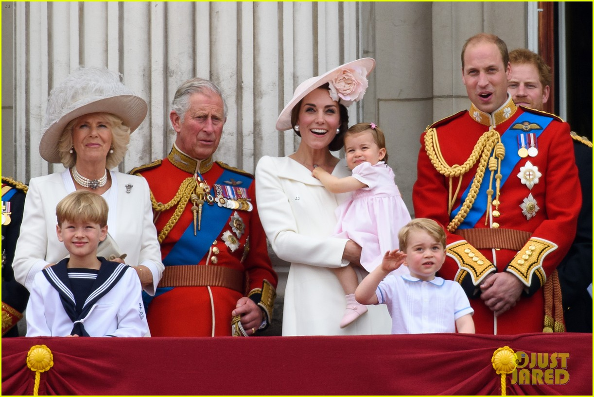 an analysis of the topic of the princess charlotte