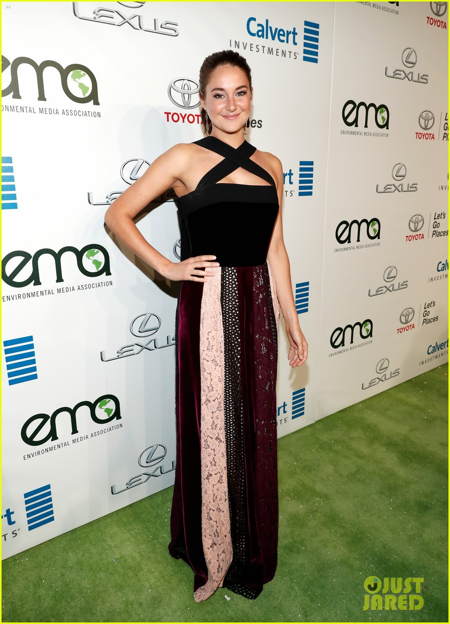 Stars at Environmental Media Awards