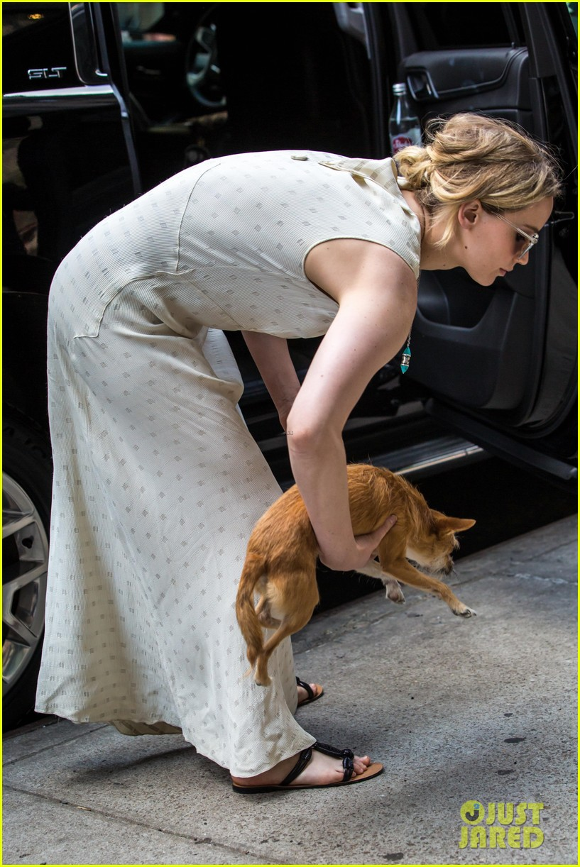 jennifer lawrence visits boyfriend darren aronofskys house with her dog 033901640