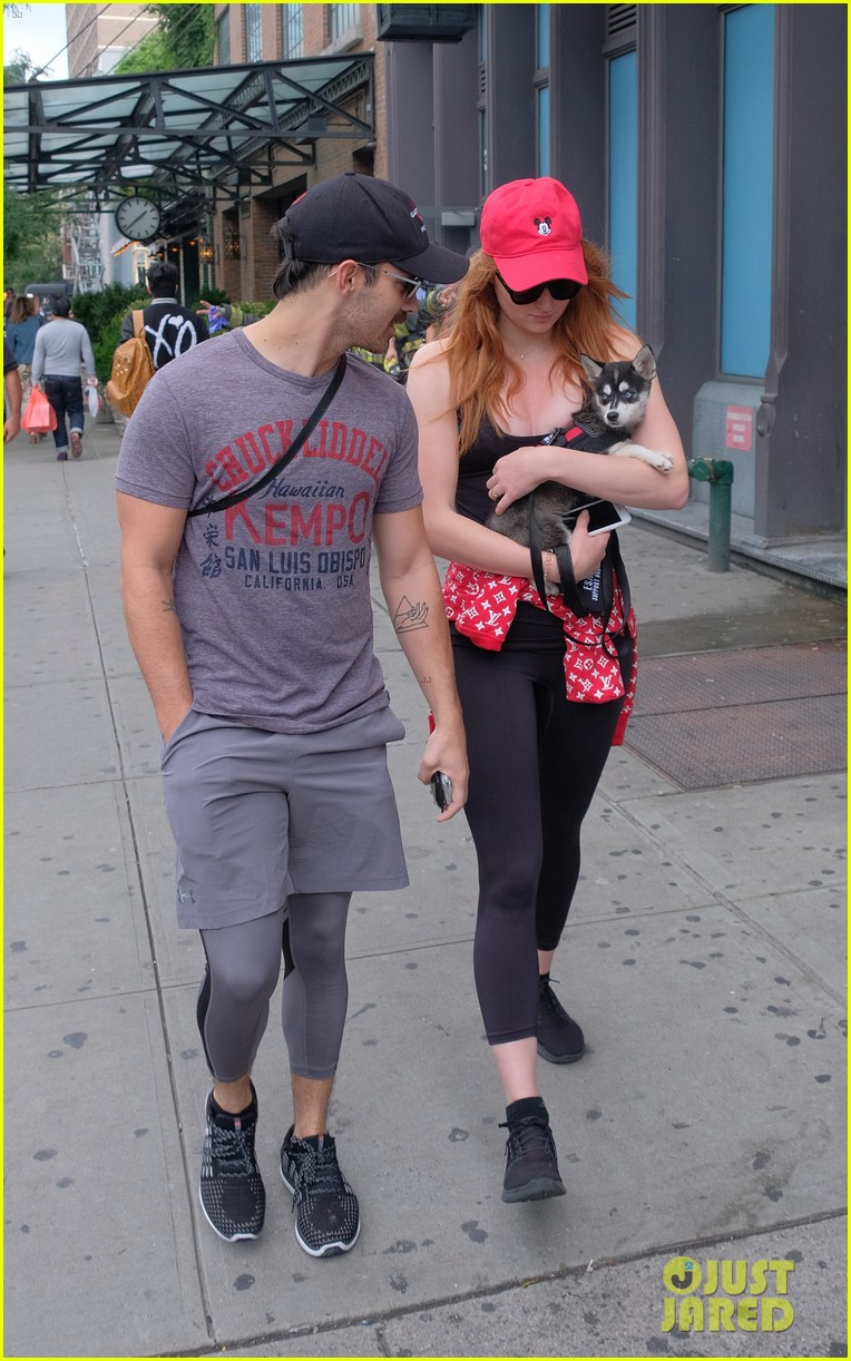 joe jonas and sophie turner adorably walk their new dog together 093952246
