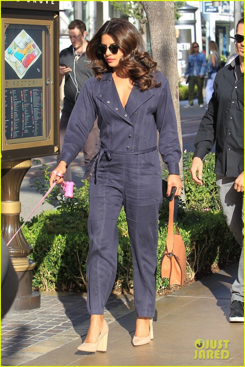 priyanka chopra stuns in blue jumpsuit while taking dog diana for a walk 063968249