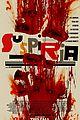 suspiria poster 01
