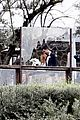 see photos from brittany snow tyler stanaland wedding 38
