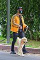 joe jonas sophie turner monday dog walk 06