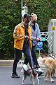 joe jonas sophie turner monday dog walk 22