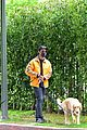 joe jonas sophie turner monday dog walk 54