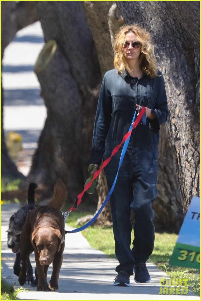 julia roberts walks dogs fab hair 04