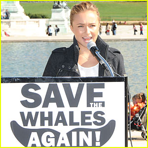 Hayden Panettiere Saves the Whales (Yes, Again)