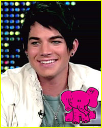 Adam Lambert's Got A Pink Elephant
