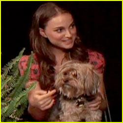 Natalie Portman's Dog = WHIZ!!!