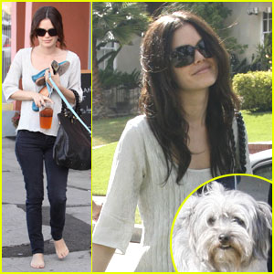 Rachel Bilson: Dog Day Afternoon