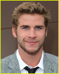 Liam Hemsworth Scores a Political Thriller