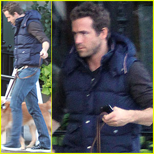 Ryan Reynolds  on Ryan Reynolds Dog Walking In Boston