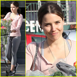 Sophia Bush: Gay Marriage Is 'Absolutely A Civil Rights Issue'