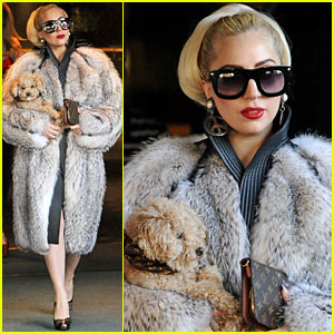 Lady Gaga: My Fur Coat Is Real! | Lady Gaga : Just Jared