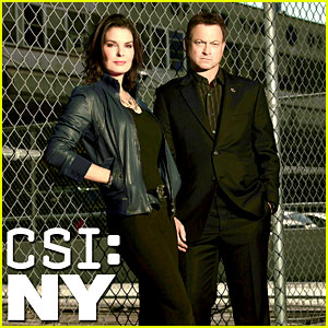 CBS Cancels 'CSI: NY' After 9 Seasons, 'Vegas' Ending Too