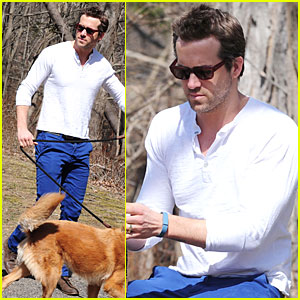 Ryan Reynolds: Bedford Stroll with Baxter!