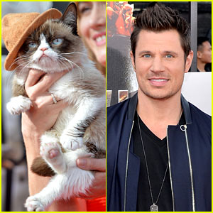 Grumpy Cat Gets a Better Seat Than Nick Lachey at MTV Movie Awards 2014