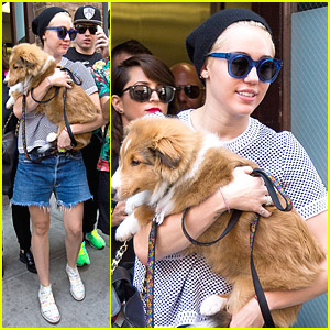 Miley Cyrus & Emu Leave Their New York Hotel & Run Into A Ton of Fans