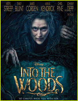 Meryl Streep Stars as The Witch in First 'Into the Woods' Poster!