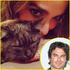 Ian Somerhalder & Nikki Reed Adopt a Kitten Together As a Couple!