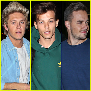 Niall Horan, Louis Tomlinson, & Liam Payne Fly Out of L.A. After the AMAs!