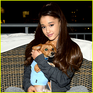 Ariana Grande Is Doing Amazing Things for NYC Rescue Dogs!