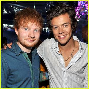 Harry Styles Is Well-Endowed, Says Friend Ed Sheeran