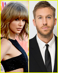 Calvin Harris Shares Photo of Taylor Swift's Two Cats