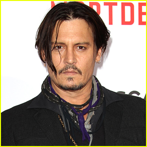 Johnny Depp's Dogs Could Be Killed If They Aren't Sent Back to the US