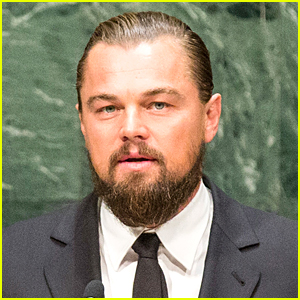 Leonardo DiCaprio Invests in Mattress Business with Tobey Maguire ...