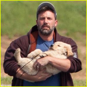 Ben Affleck Cradles an Adorable Puppy in His Arms