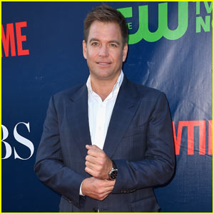 NCIS' Michael Weatherly Arrested For DUI