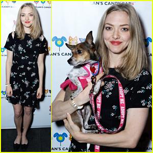Amanda Seyfried & Pup Finn Team Up For Charity!