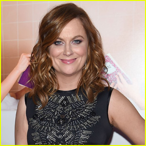 Amy Poehler Has a New Television Project in the Works!