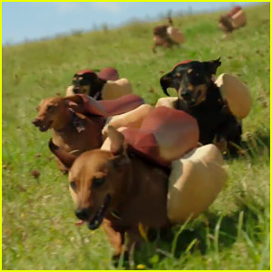 Heinz Super Bowl Commercial 2016 Features So Many Puppies - Watch Now!