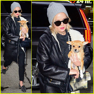 Jennifer Lawrence Arrives in Style With Her Pup Pippi