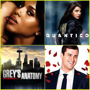 ABC Renews 15 Shows for 2016-17 Season - Full List!
