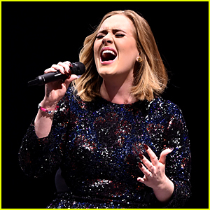 Adele Fan Injured at Concert By Falling Chain, She Responds