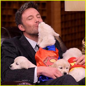 Ben Affleck Cuddles with Superhero Puppies on 'Fallon'