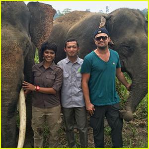 Leonardo DiCaprio Fights to Help Wildlife in Indonesia