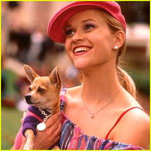Reese Witherspoon Mourns Death of Dog Bruiser Woods