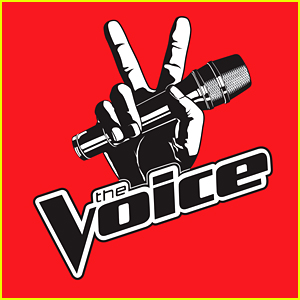 Who Went Home on 'The Voice' 2016? Knockout Night 2 Results