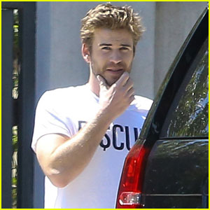 Liam Hemsworth Sports Sexy Scruff in Studio City